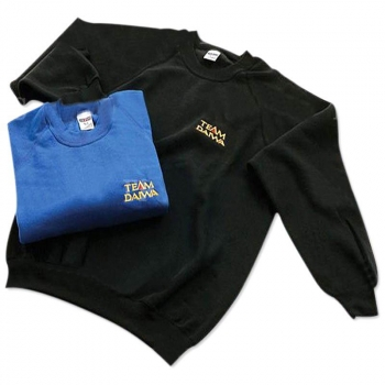 Толстовка DAIWA Team Daiwa Sweatshirt цвет Black в интернет магазине Rybaki.ru